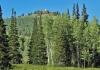 Murdock Peak
