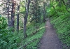 Desolation Trail