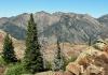 Wildcat Ridge