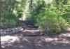 Bear Canyon TH